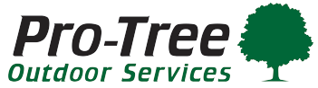 Chanhassen Tree Service | Tree Removal and Trimming