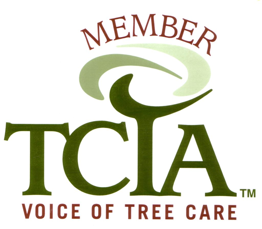 chanhassen tree service tree removal and trimming